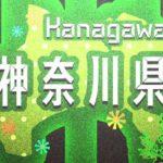 【情報下さい】神奈川県 秦野市のお正月情報を集めています。