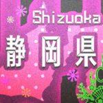 【情報募集してます】静岡県 駿東郡 小山町のお正月情報