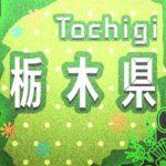 【情報下さい】栃木県 足利市のお正月情報を集めています。